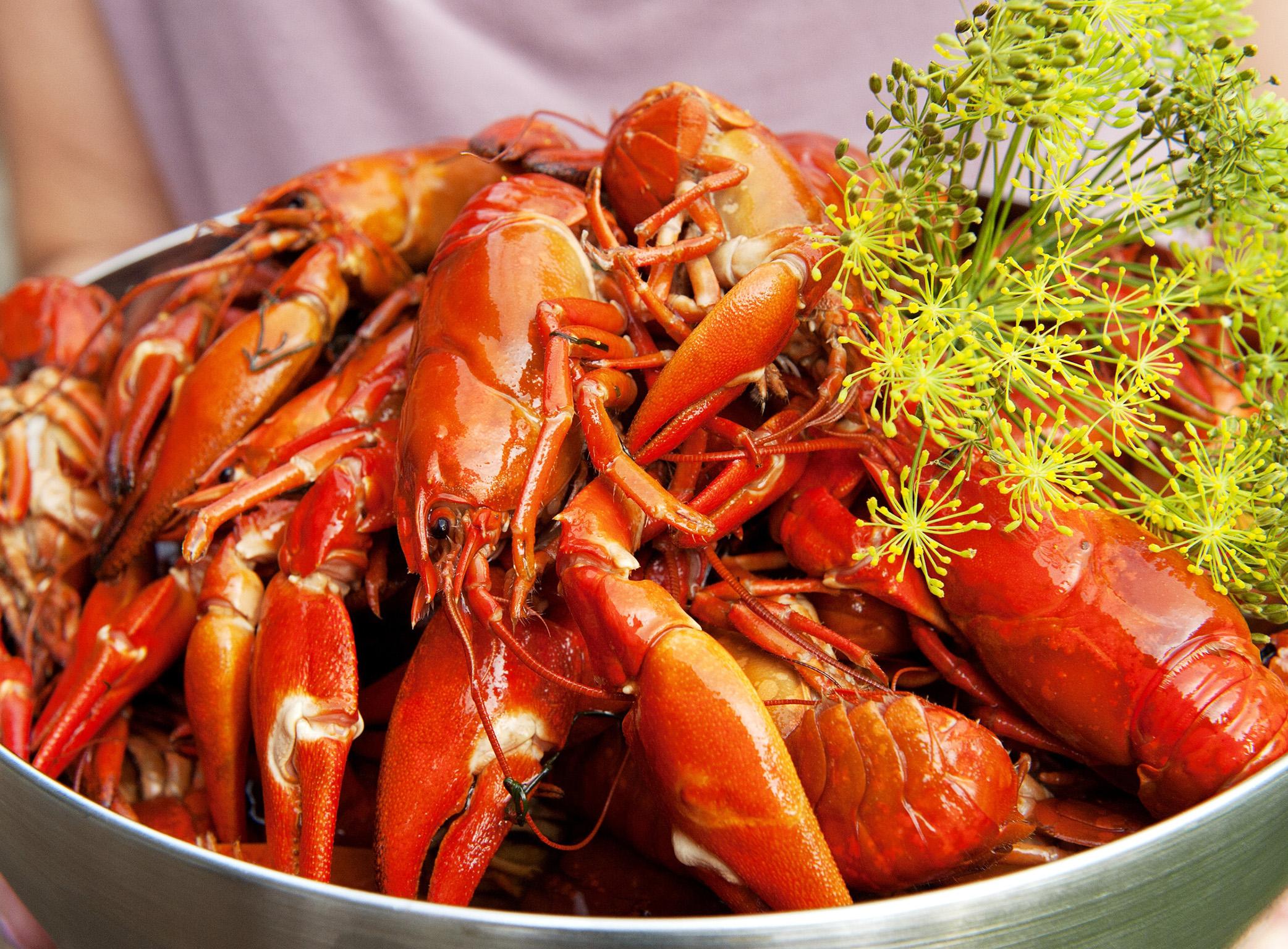 Celebrating-Crayfish-party